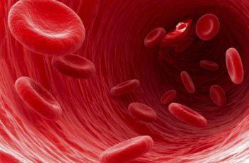 O Teste de Hemoglobina Glicada é Útil Para Todo Mundo, Não Apenas para Diabéticos