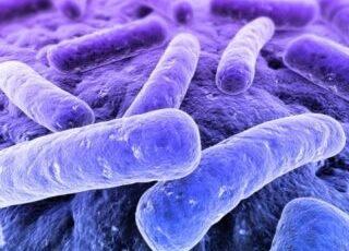 O Microbioma Intestinal Tem um Papel Nas Doenças Autoimunes?
