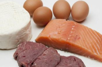 Quanta Proteína é Excessiva?
